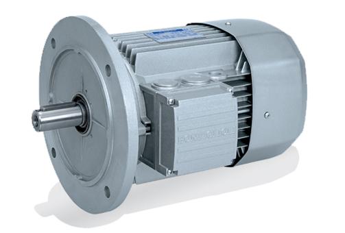 bonfiglioli replacement 3 phase motor for conveyor drive. Black Bedroom Furniture Sets. Home Design Ideas